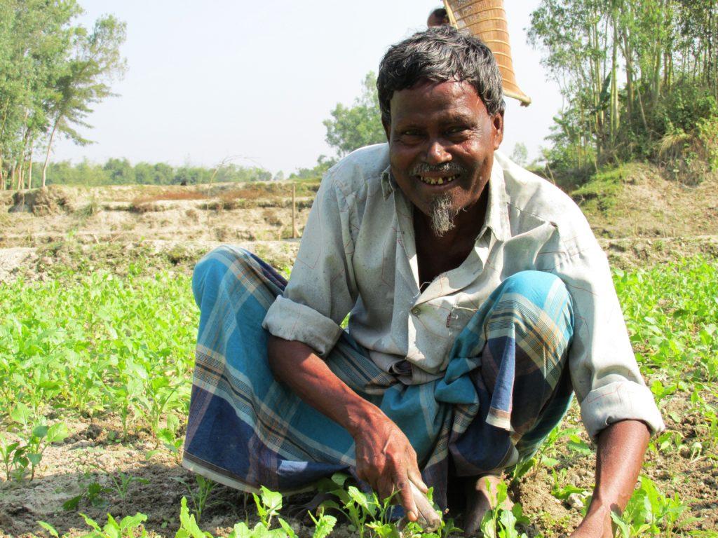 Hombre trabajando la tierra