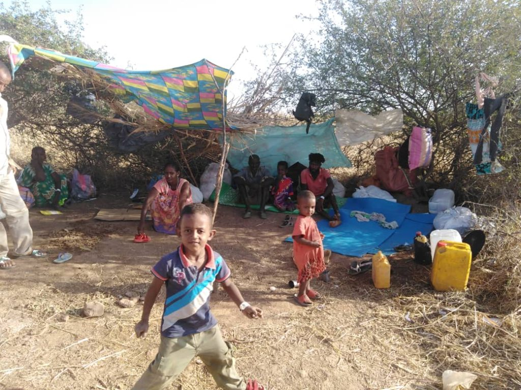 El conflicto y la crisis climática causan estragos en Etiopía